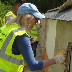 Training Course: Lime Plastering Course